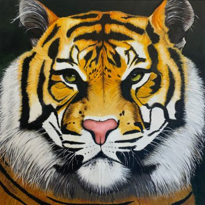 """Tiger""  Öl auf Leinwand 90x90cm 450€"